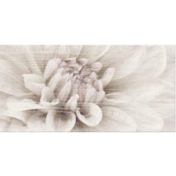 Trendy Wood 30x60 Dekor Květ A