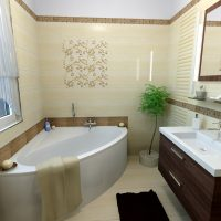 koupelna Amazonia.jpg3