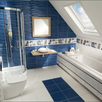 koupelna elida modra.jpg1