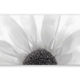 Dekor Summer Colours černá inserto květ 29,7x60