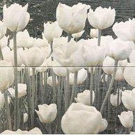 Dekor Sabaudia tulip inserto 44,8x44,8