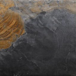Dlažba Florencia Gris 60x60