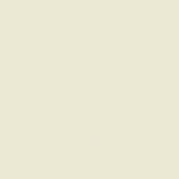 Obklad Gamma Waniliowa lesk 19,8x19,8
