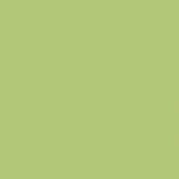 Obklad Rako Color One světle zelená 20x20 mat