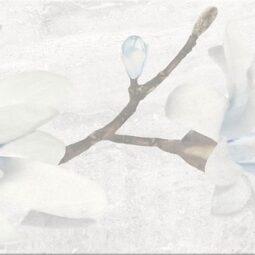 Obklad Stone Flowers grey inserto 25x75