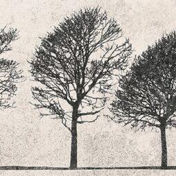 Obklad Willowo Sky inserto Tree 29x89
